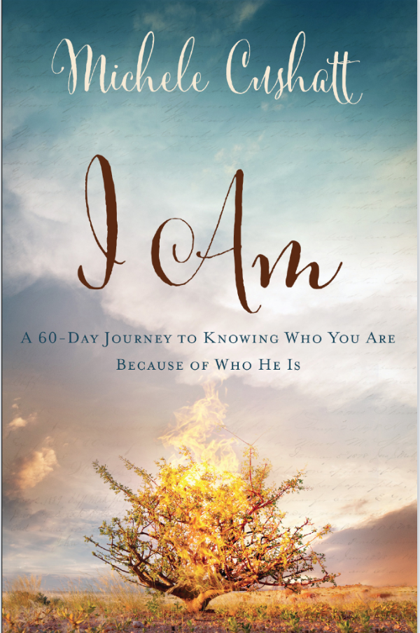 I Am by Michele Cushatt